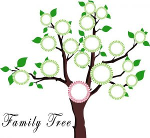 Organise Your Genealogy Research