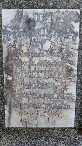 Cemetery Renewal, Karrakatta Cemetery, Perth, Western Australia