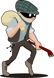Burglar Robbery
