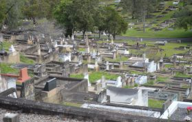 Toowong Cemetery Rolling Hills