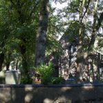 St Giles Short Heath 52 Ancestors in 52 Weeks Thankful