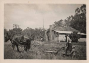 1949 Uncle Al and Don plowing the field